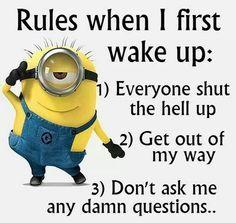 15 Minion Joke Of The Day – Insane Memes & Insane Humor
