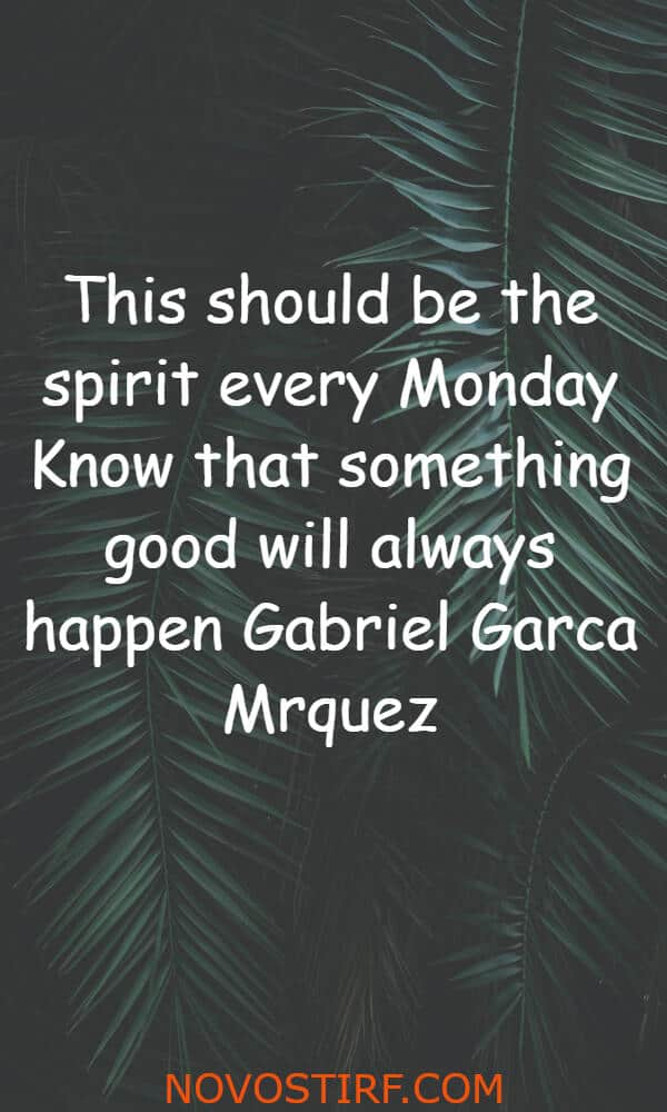 20+ Inspirational Quotes For Monday